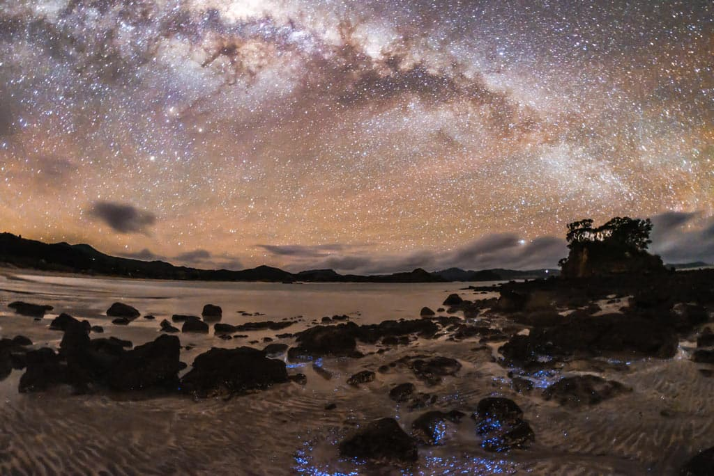 The Great Barrier Dark Sky Sanctuary